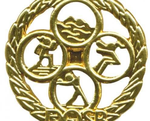 Sportabzeichen in Gold